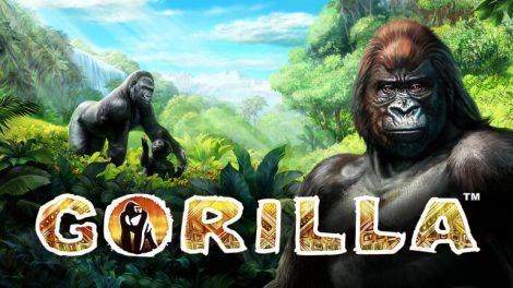 Gorilla_Ov_0
