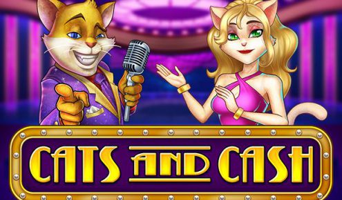 cats-and-cash-slot-playn-go-2