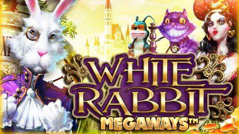 white-rabbit-logo